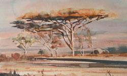 Trees-250x150